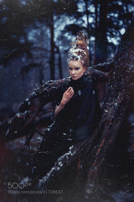 Photograph *** by Nikolay Tikhomirov on 500px