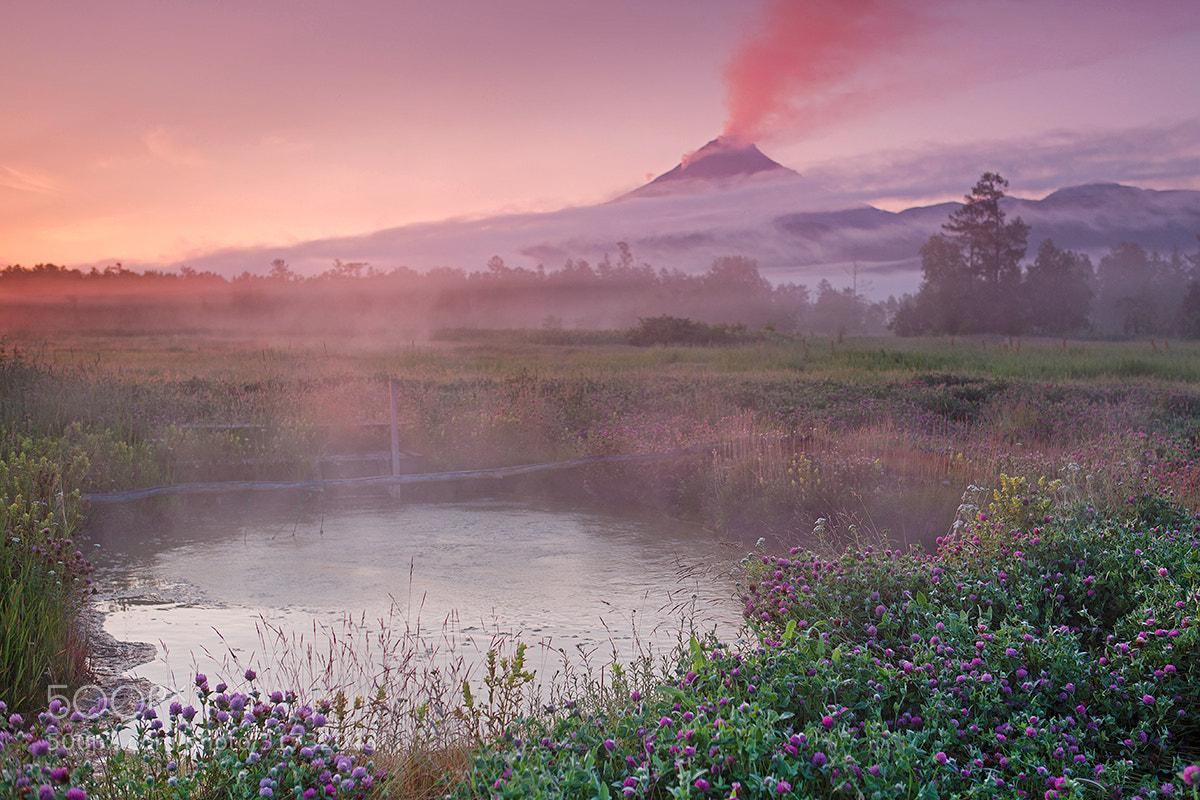 Photograph Warm morning by Денис Будьков on 500px
