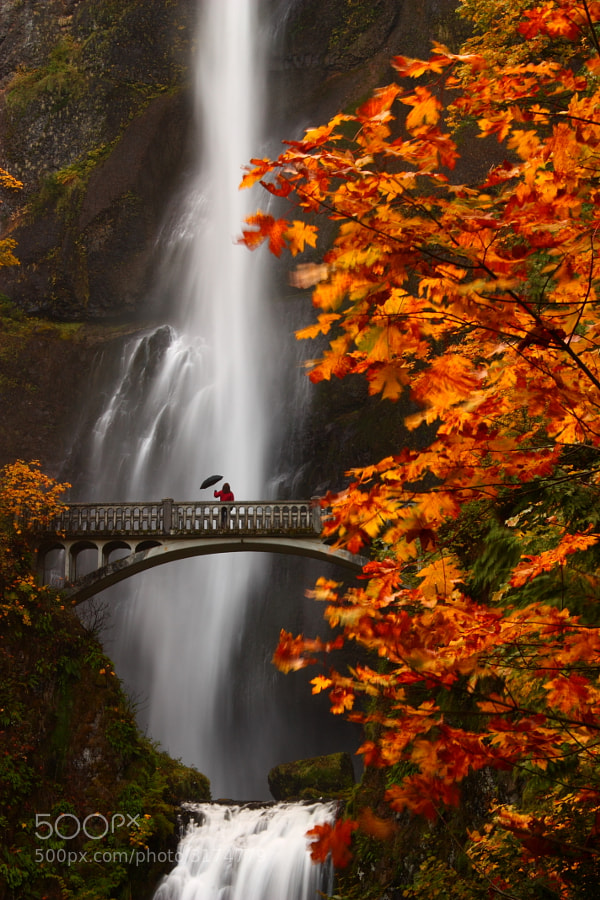 Photograph Multnomah Moment by Steven  Michael on 500px