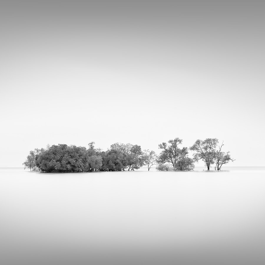 Photograph Copse by Benjeev Rendhava on 500px