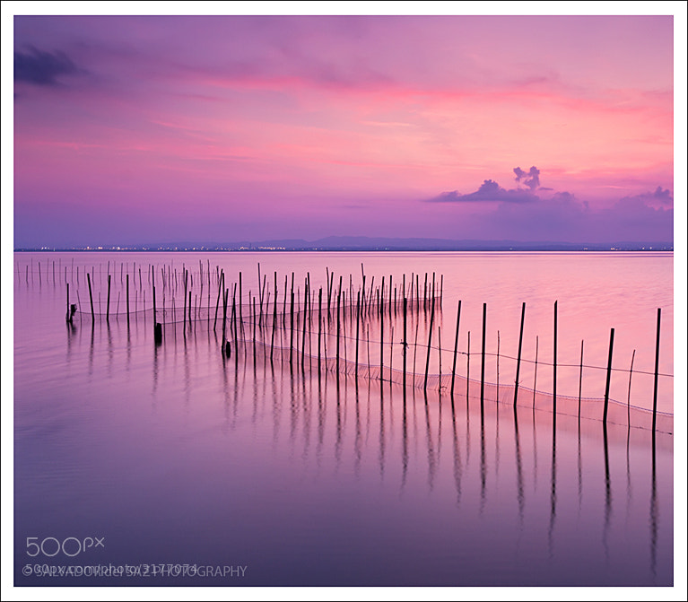 Photograph Fishing nets II (colour version) by Salvador del Saz on 500px