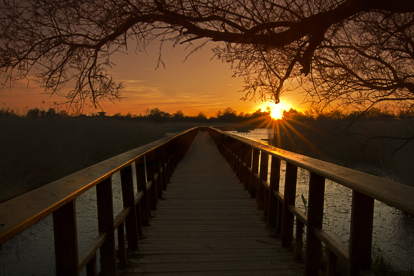 Photograph To the sunset by Ramiro Diaz Lopez on 500px