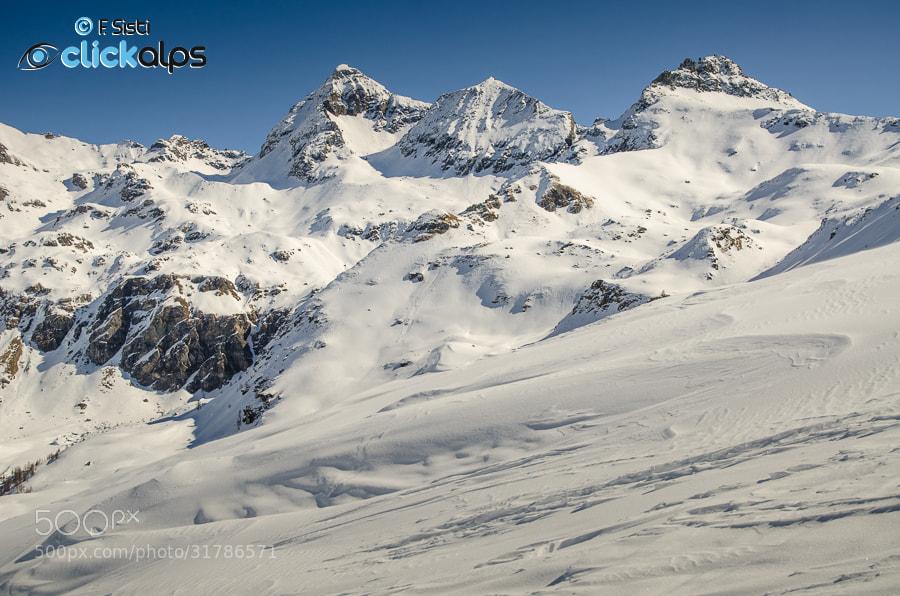 Photograph Delizia di neve... (Valtournenche, Valle d'Aosta) by Francesco Sisti on 500px
