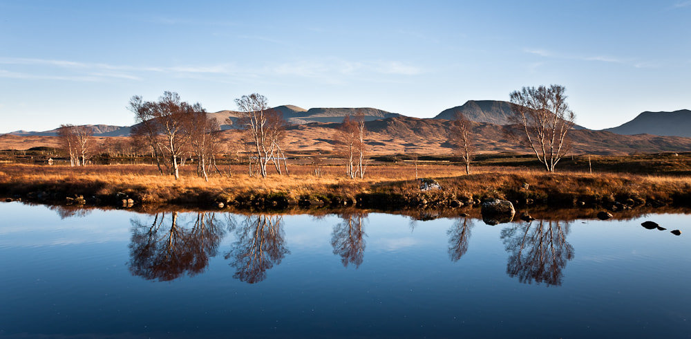 Photograph NW-Scotland, Rannoch Moor, Loch Ba, Trees by Simon Auchterlonie on 500px