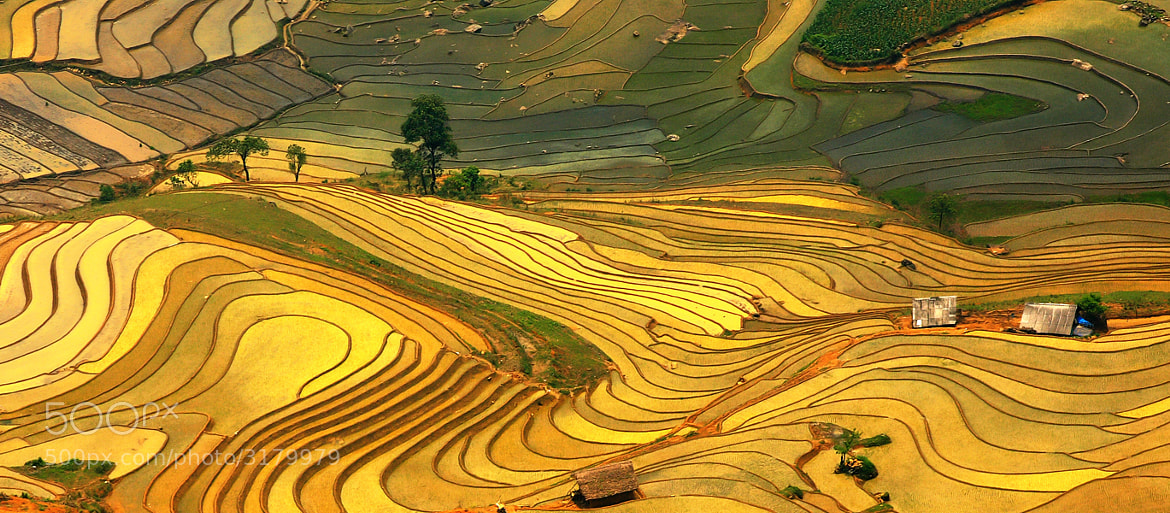 Photograph Y Ty  Vietnam by Viet Hung on 500px