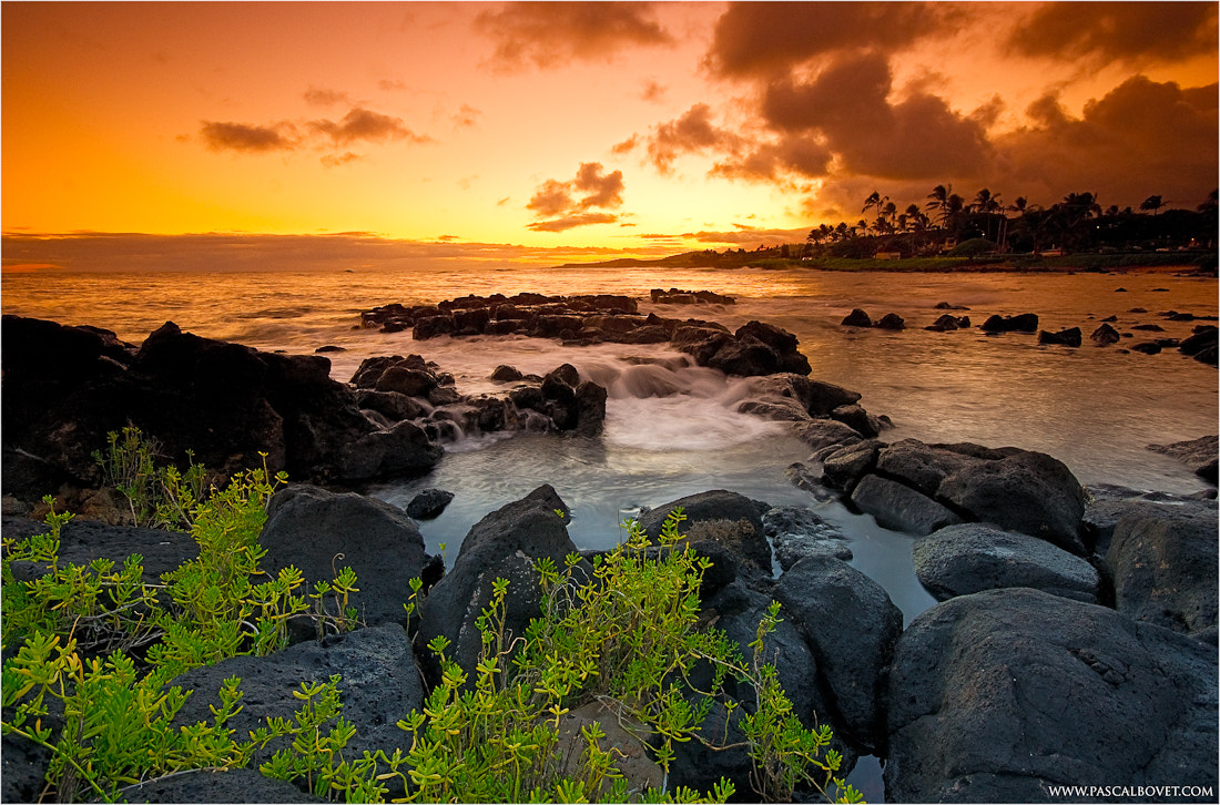 Photograph Hawaiian Sunset II by Pascal Bovet on 500px