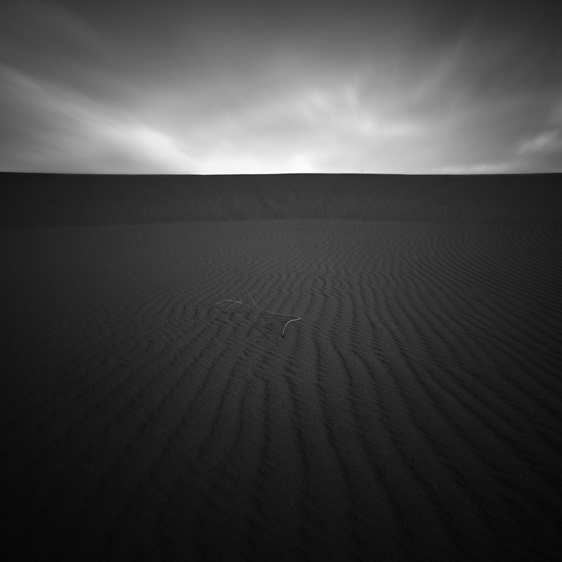 Photograph Titan by jeff mercader on 500px