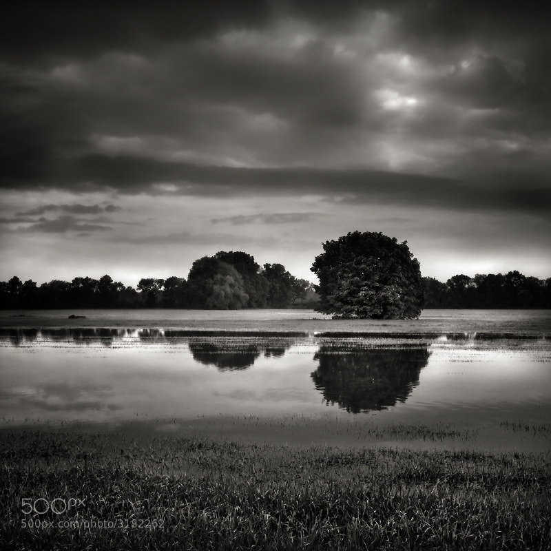 Photograph After the flood  by Jaromir Hron on 500px
