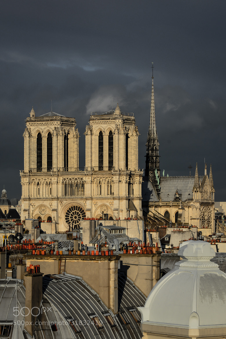 Photograph Notre Dame by Torsten Lindenberg on 500px