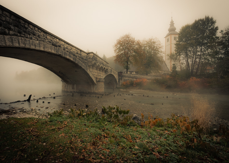 Photograph Mystical morning by Brane Kosak on 500px