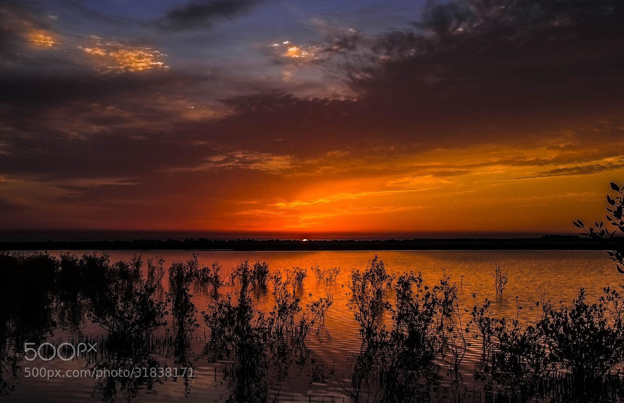 Photograph Daybreak by the Lake by julian john on 500px