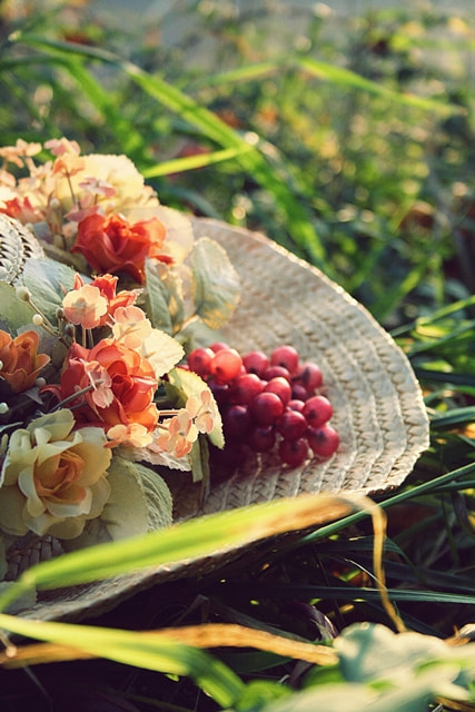 Photograph Summer memories by Laura Meggers on 500px