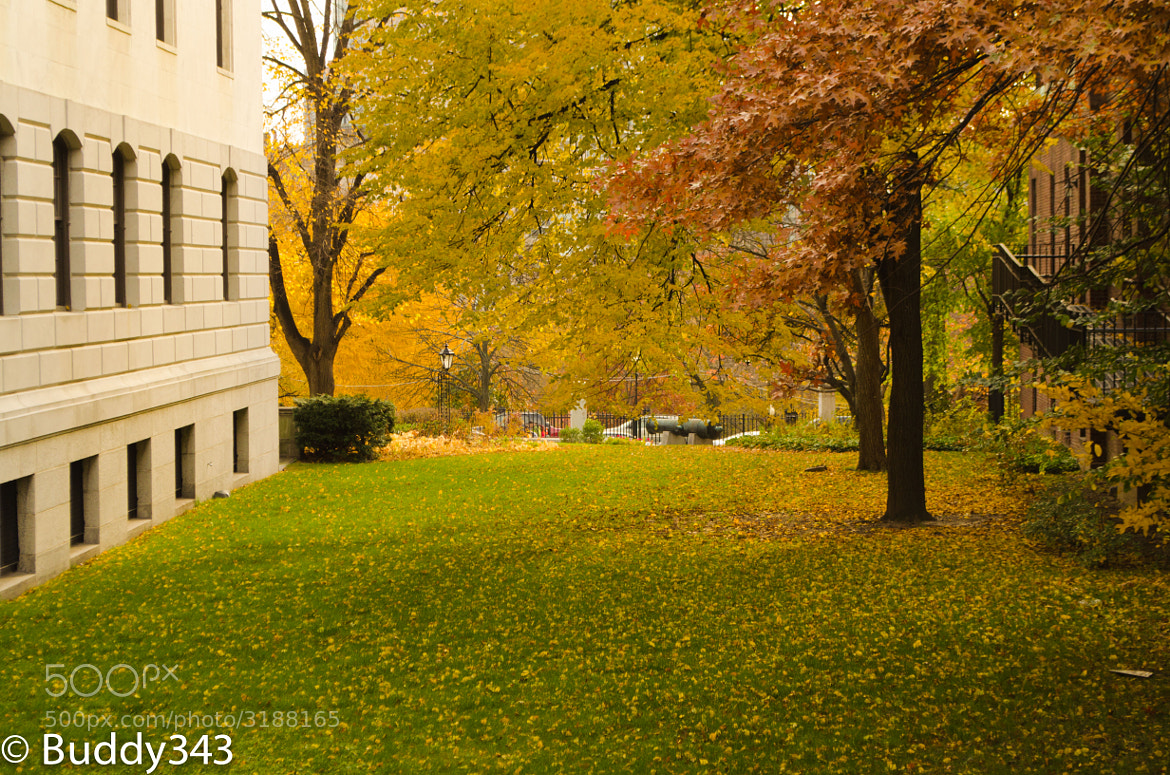 Photograph State House Lawn by Buddy 343 on 500px
