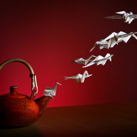 Tea Phoenix Flight