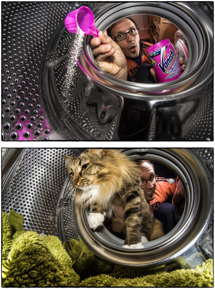 Photograph Could I  wash a cat in the washing machine? by Filippo Boatto on 500px