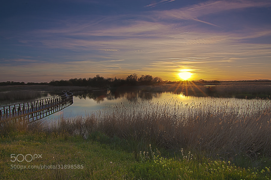 Photograph Sunset in Daimiel by Ramiro Diaz Lopez on 500px