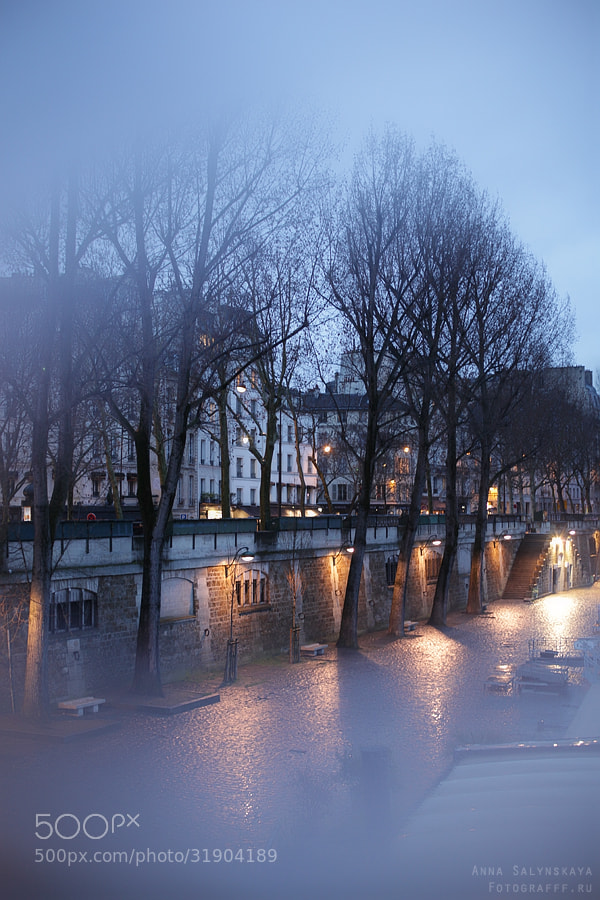 Photograph Paris. Evening. Rain. by Anna Salynskaya on 500px