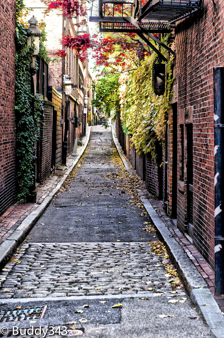 Photograph Alley Rd by Buddy 343 on 500px