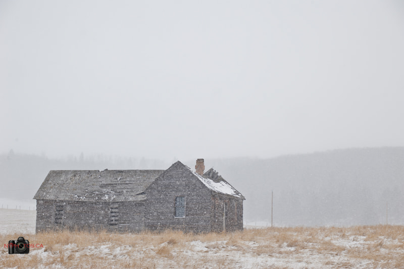 Photograph Snowy...err...Abandoned House by Neil Young on 500px