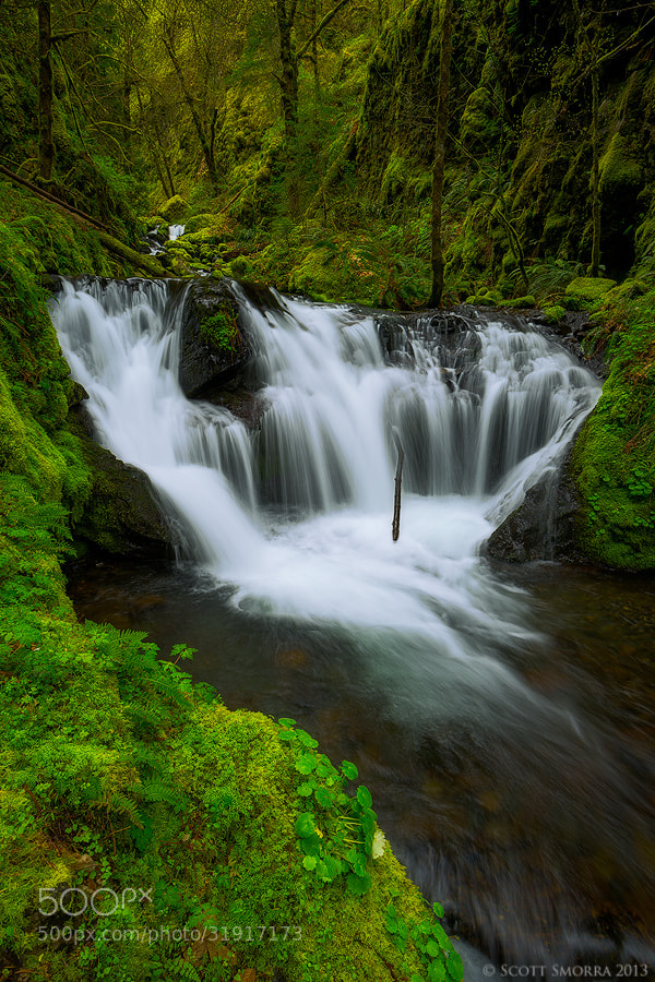 Photograph Lost Emerald by Scott  Smorra on 500px
