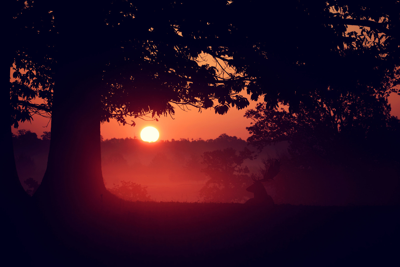 Photograph dawn break by Mark Bridger on 500px