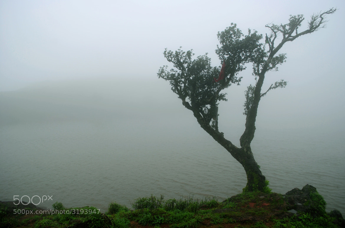 Photograph Lonely by Vishnu Raj on 500px