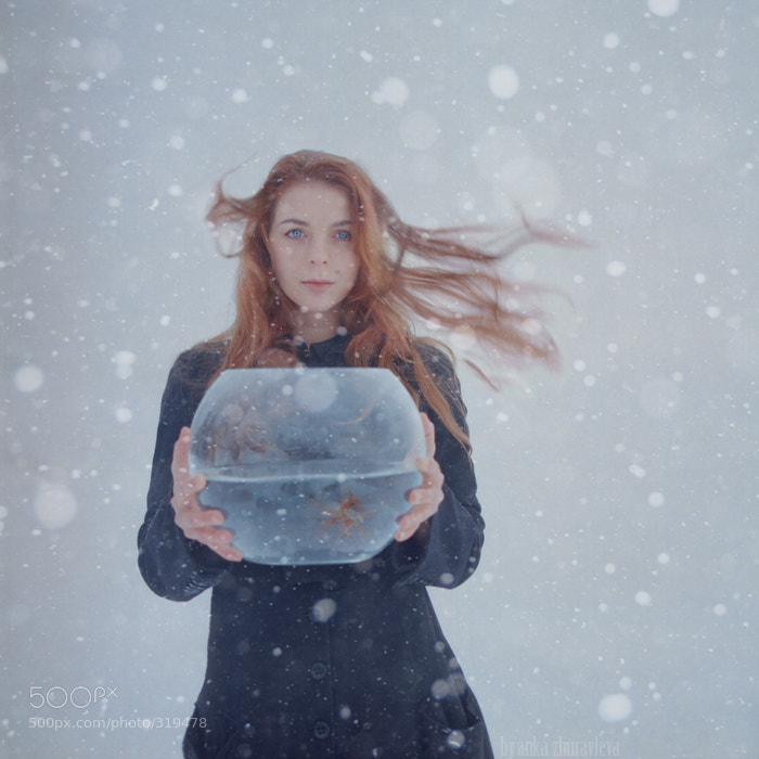 Photograph golden fish by Anka Zhuravleva on 500px