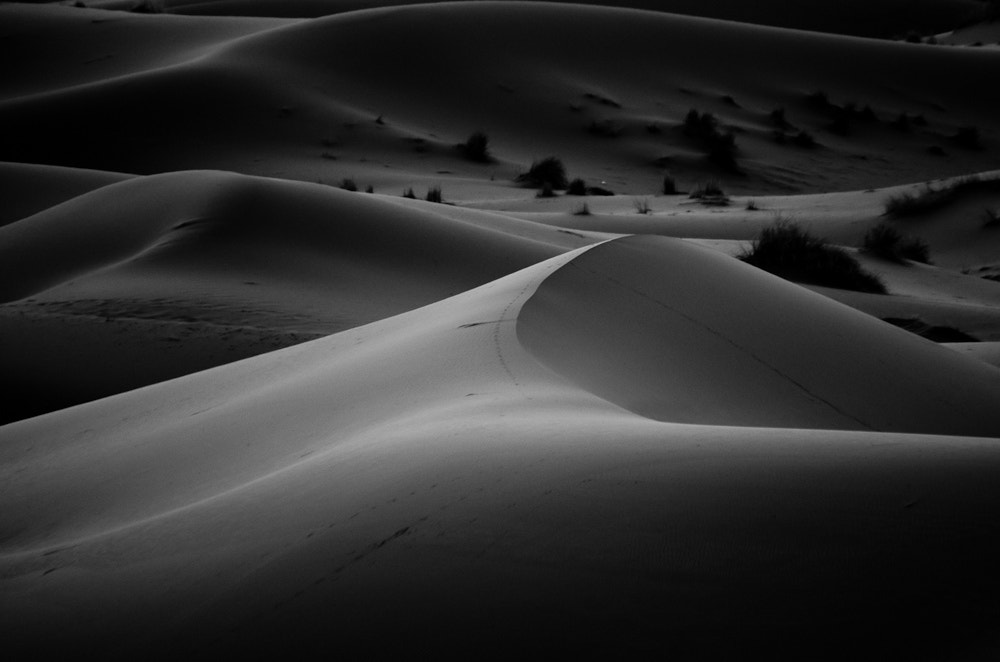 Photograph Dunes by Chris Jones on 500px