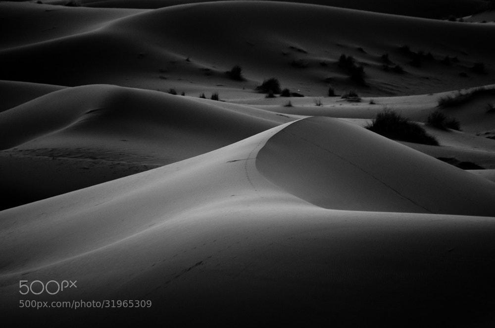 Photograph Dunes by Chris Jones on 500px