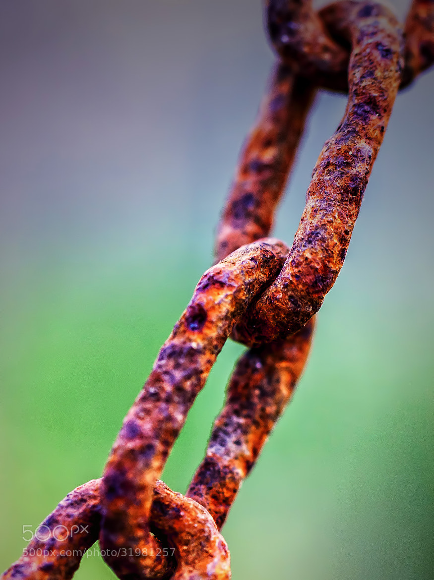 Photograph Rusty Chain. by Yannis Karantonis on 500px