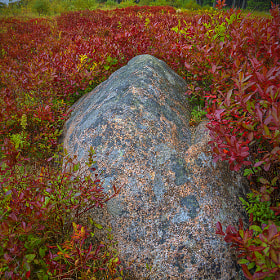 Rock and  Field by Alan Borror (alborr)) on 500px.com