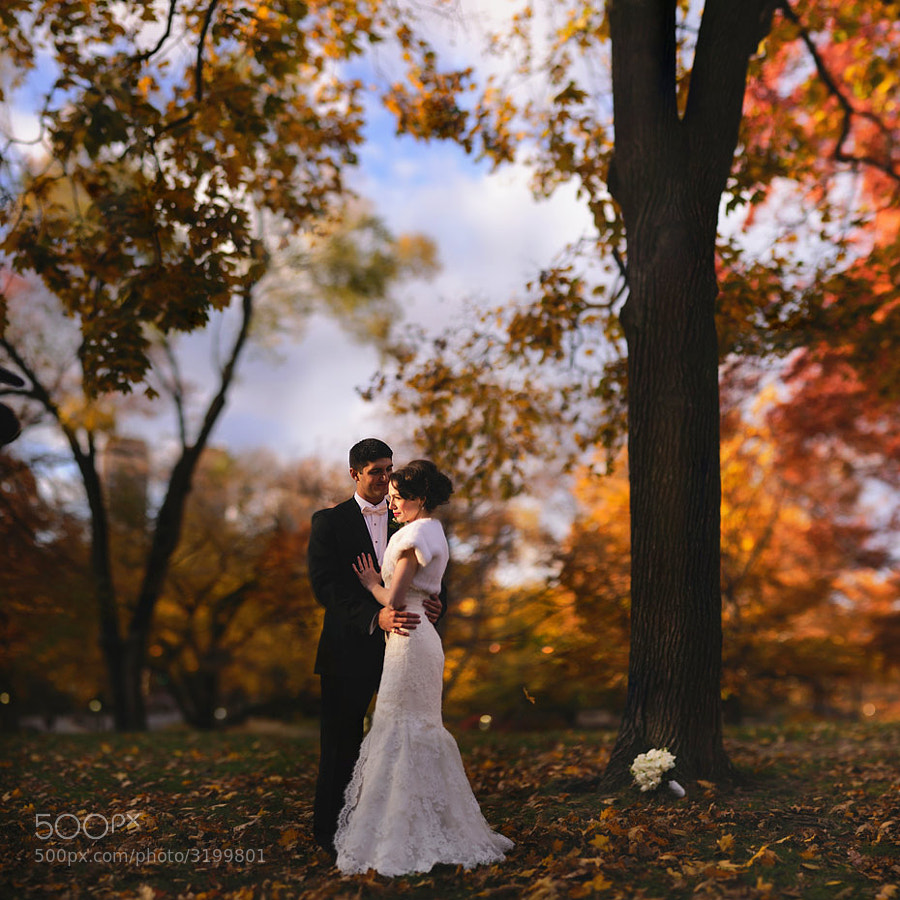 Elizabeth had long dreamed of a November wedding in Central Park. This is why.