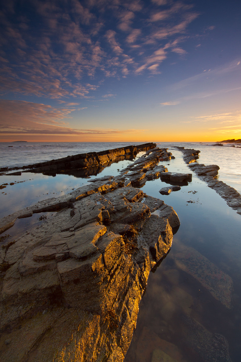 Photograph Afternoon Glow by Simon Cameron on 500px
