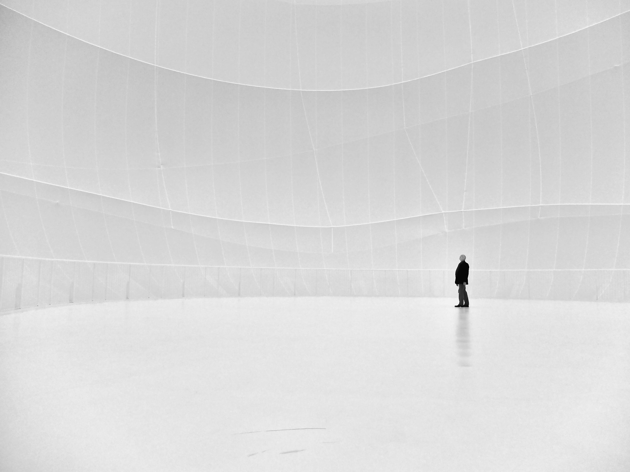 Photograph Lost in whiteness by Georgie Pauwels on 500px