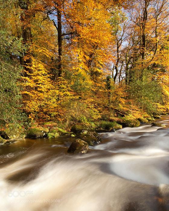 Photograph Autumn Rapid by Alex Nail on 500px