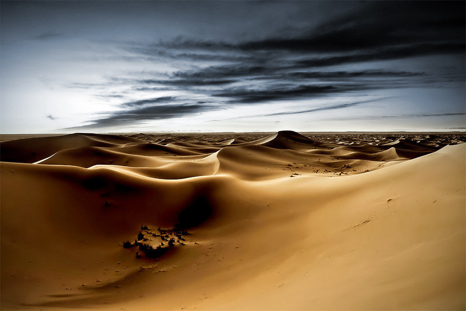 Photograph * I've lost my way * by clement jousse on 500px