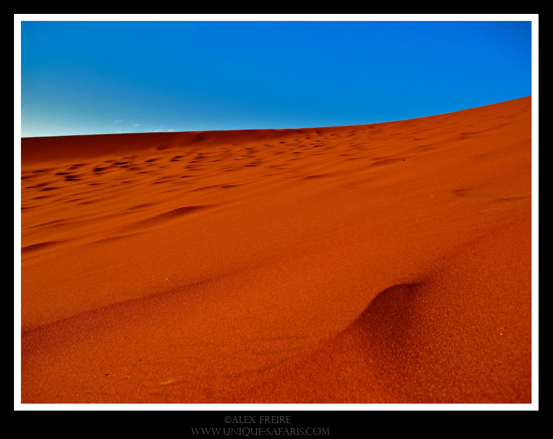 Photograph Desert red sand by Alex Freire on 500px