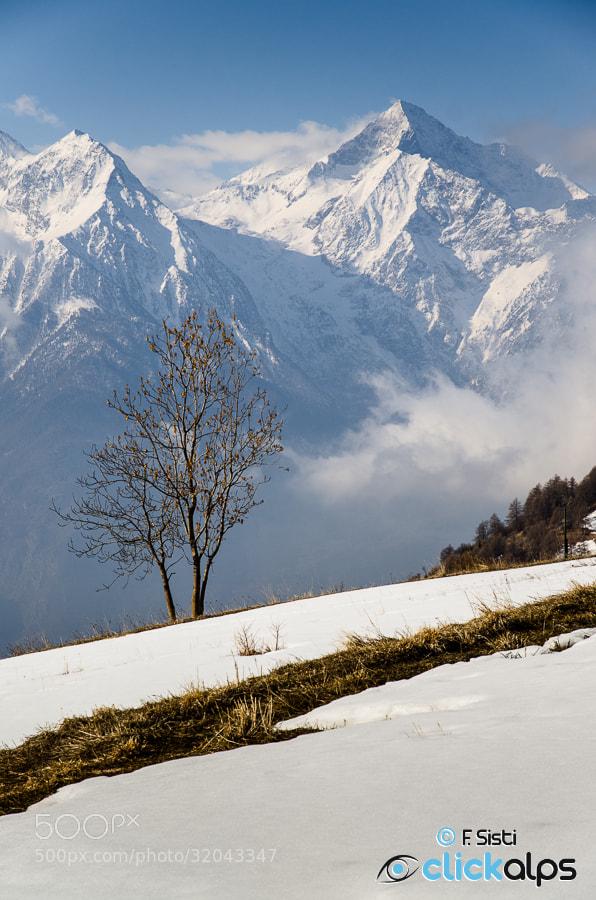 Photograph Angolo con vista... (Valle di Saint-Barthélemy, Valle d'Aosta) by Francesco Sisti on 500px