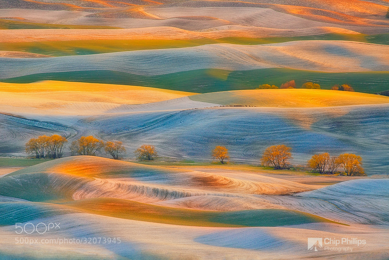 Photograph Spring Snow, Palouse by Chip Phillips on 500px