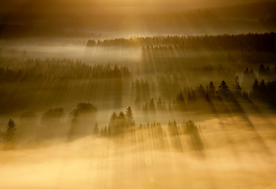 Photograph Hot rays by Marcin Sobas on 500px
