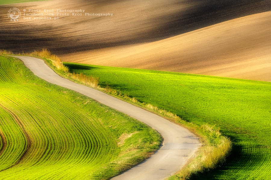Photograph a road by Piotr Krol on 500px