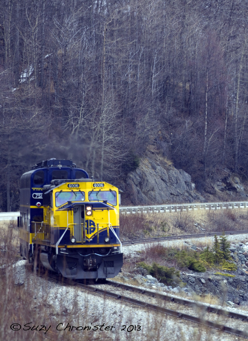 Photograph Alaska RailRoad by Suzy Chronister on 500px
