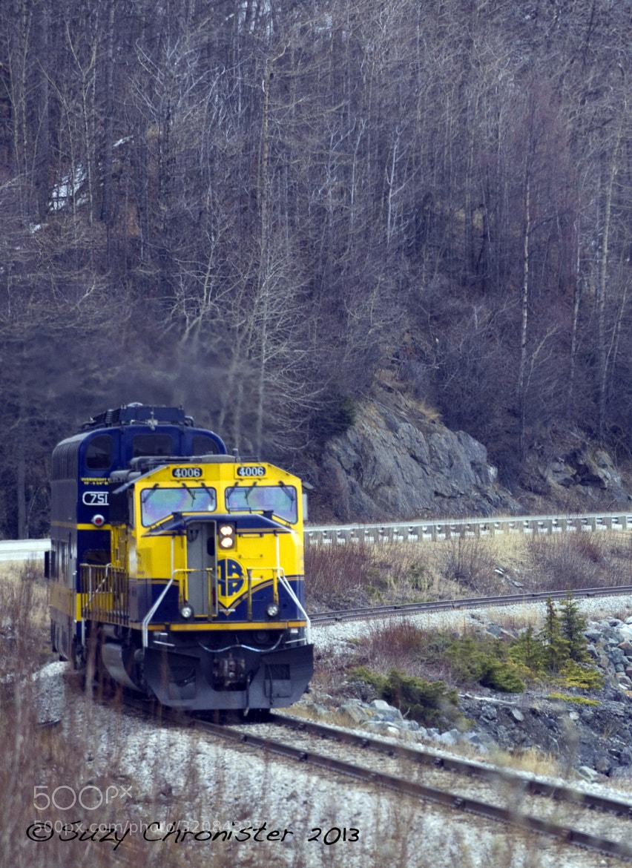 Photograph Alaska RailRoad by Suzy Chronister on 500px