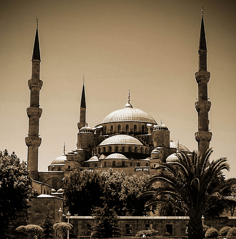 Photograph The Blue Mosque by Ali KoRdZaDeh on 500px