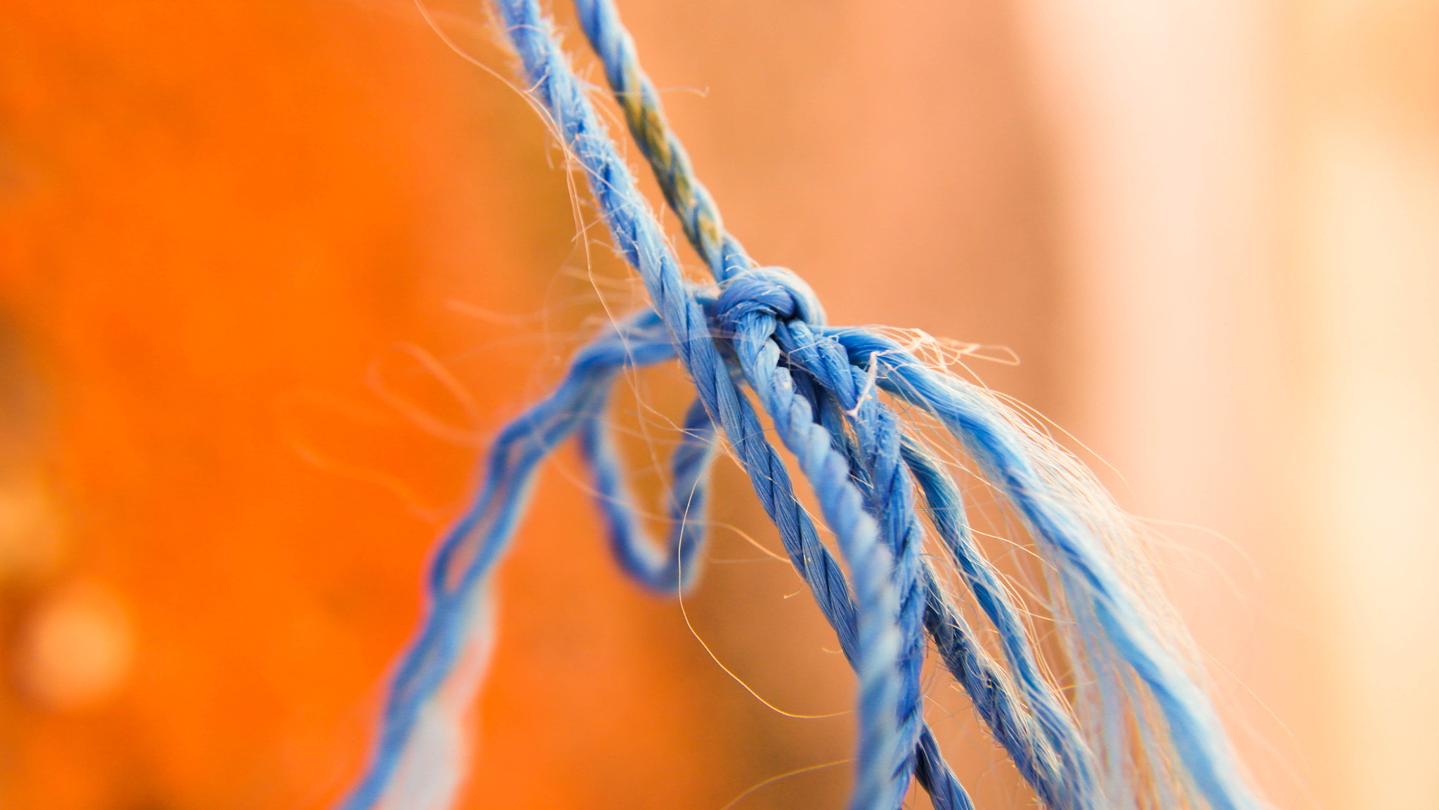Photograph A blue rope. by Jim Tsipoutas on 500px