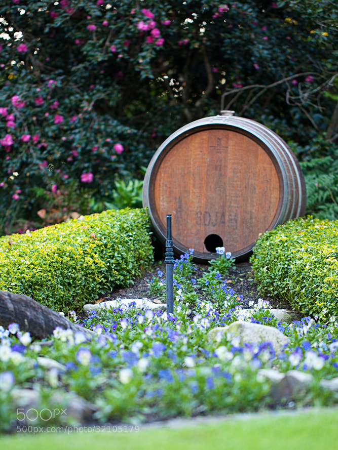 Photograph A Barrel by Tim McGuire on 500px