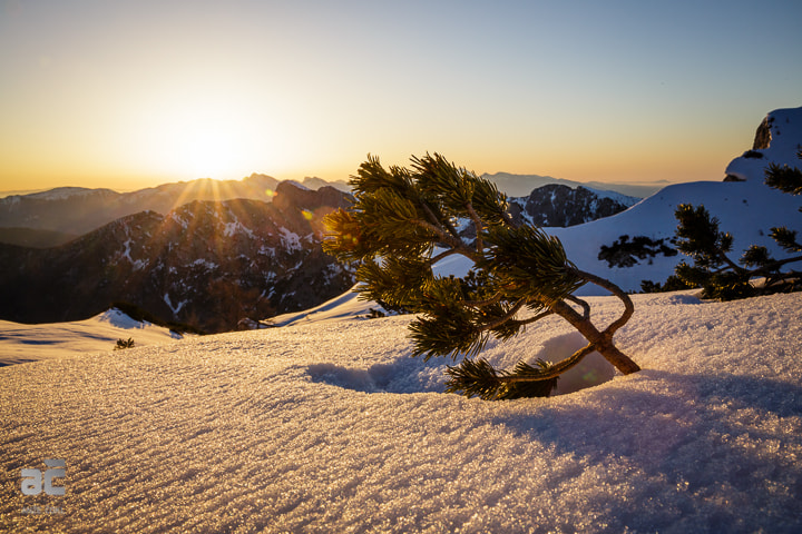 Photograph Sun from the east and power of nature with winds from the west! by Anže Čokl on 500px