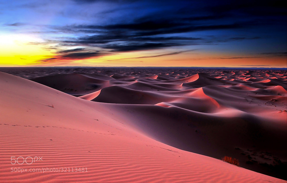 Photograph * Red tide * by clement jousse on 500px