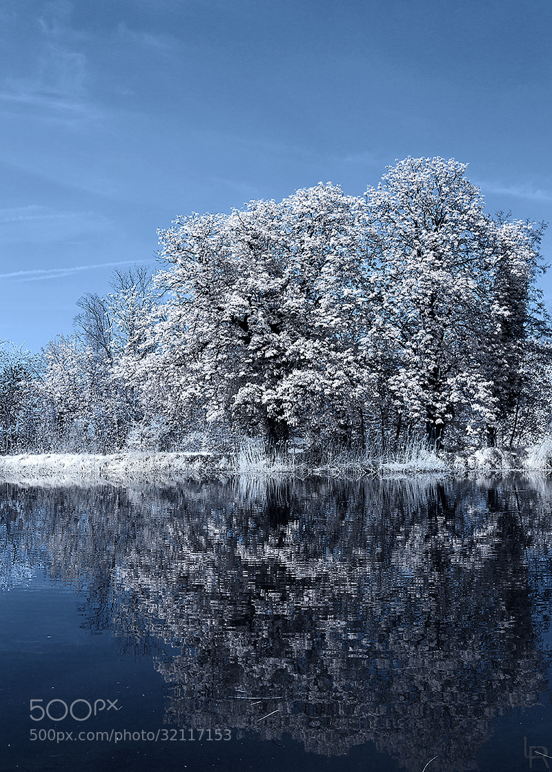 Photograph Infrared test by Emilie Filrouge on 500px