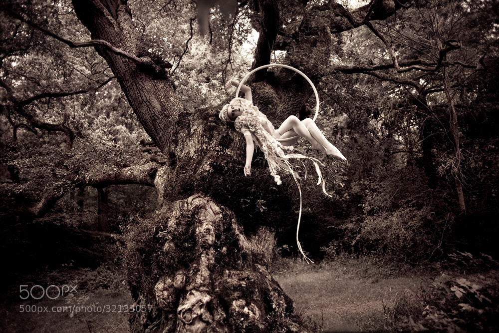 Photograph Far, Far Away, Part II     (diptych) by Kirsty Mitchell on 500px